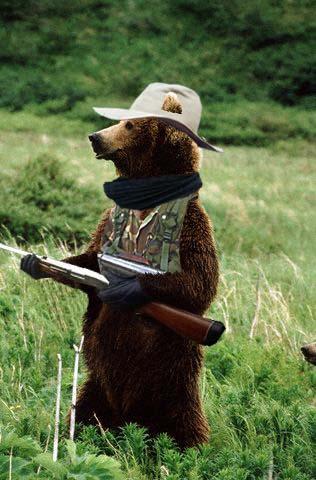 15 Feb 1999 --- Brown bear standing on its hind legs --- Image by © Kennan Ward/CORBIS